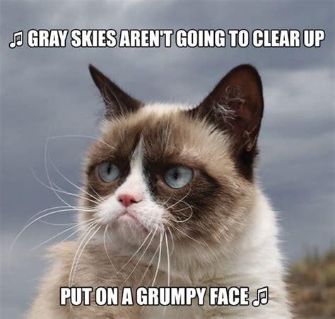 Grumpy Meme Face - best 25 grumpy face ideas on pinterest fox face red