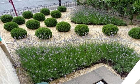 best of easy landscaping ideas for beginners easy low radiant easy landscaping ideas in small front yard along