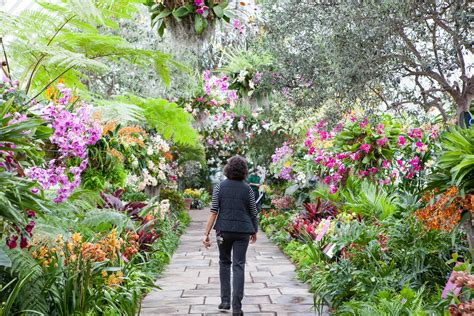 botanical garden show 15 breathtaking botanical gardens to visit this season photos architectural digest