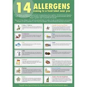 Allergy poster food allergies food posters allergy signs allergens