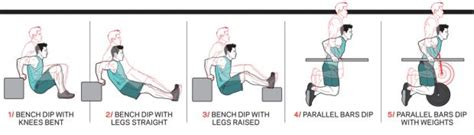 Legs Up Bench Press How To Do Triceps Dips Coach Exercise Guide