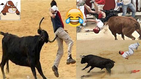 imagenes perronas de toros toreadas graciosas 2017 corrida de toros graciosas