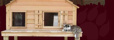 wooden dog house kit outdoor cat house plans cat house for those chilly nights all outdoor cat enclosure