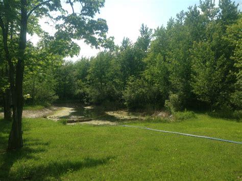 birch run michigan pond restoration birch run sagianw county