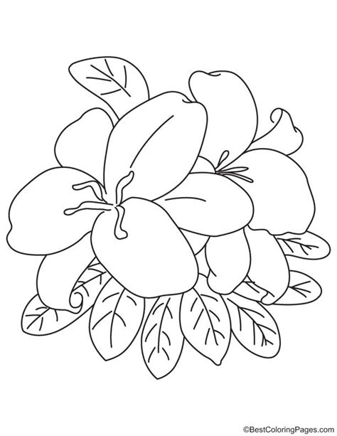 coloring pictures of easter lilies easter coloring page free easter