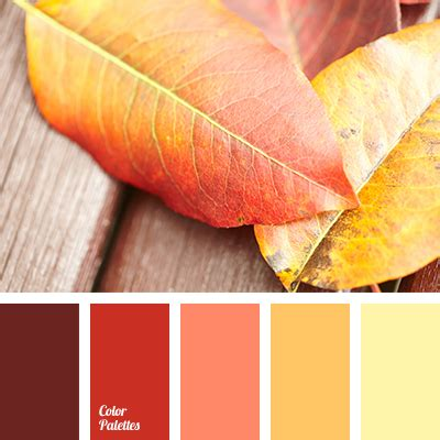 colors that match with brown bright red brown color burgundy color color matching fall color matching orange color pale