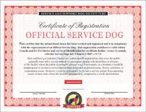 service dog certificate template service dog certificate template free printable service dog certificates
