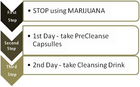 Verdant Herbals 48 Hour Thc Detox Kit Reviews by Xxtra Clean Review Detox Marijuana Fast