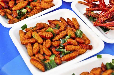 Insectes Dans La Cuisine by Manger Des Insectes C Est Go 251 T