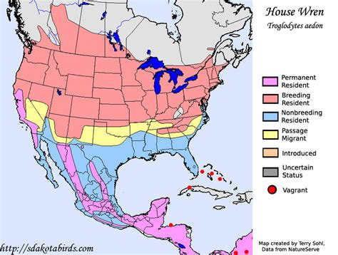 house wren species range map