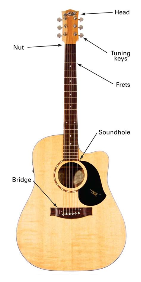 Guitar String - acoustic guitar types learn to play
