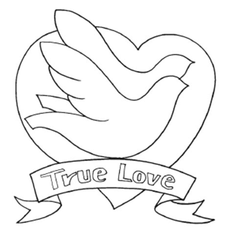 love birds pages coloring pages