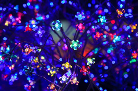 decorative led lights free stock photo public domain