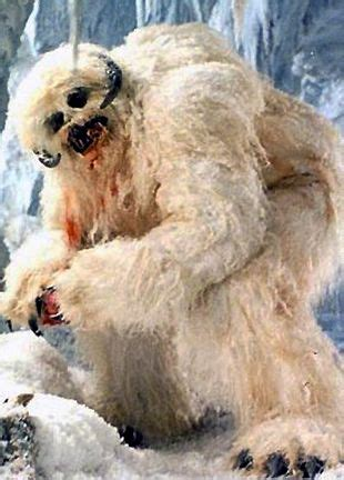 26 best images about Yeti (Big Foot) on Pinterest | Cards ... Awesome Pictures Of Werewolves