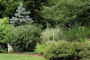 mr adam garden designs photos