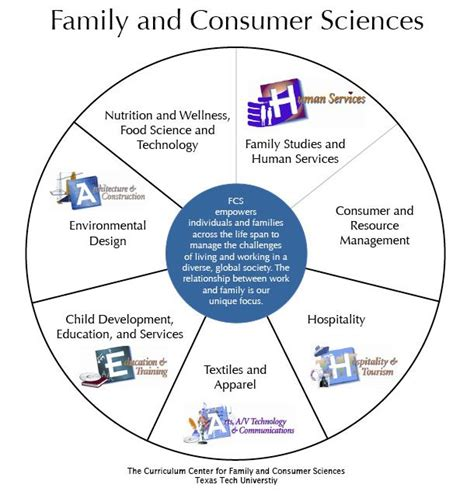 Fcs Curriculum On Pinterest Lesson Plans Child Development And Hom Family And Consumer Science Lesson Plan Template
