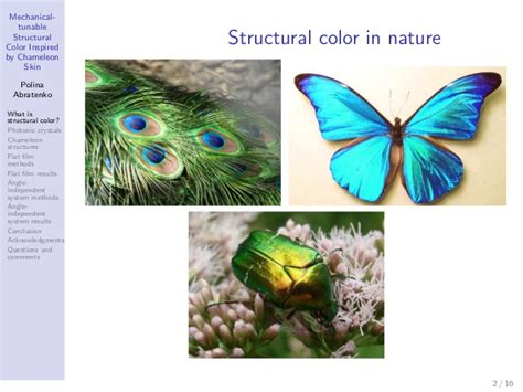 structural color presentation mechanical tunable structural color