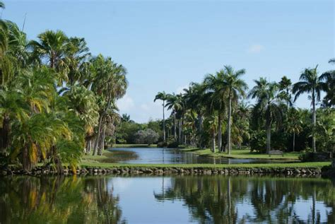 Fairchild Botanical Garden Coral Gables Fairchild Tropical Botanical Garden Garden Traveler