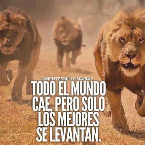 imagenes con leones cristianas m 225 s de 25 ideas fant 225 sticas sobre frases sobre lobos en