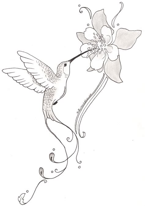 tattoo designs hummingbirds and flowers tattoos of humming bird hummingbird flower tattoos designs