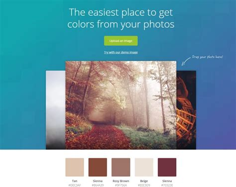 canva color palette developing your color palette idashboards blog
