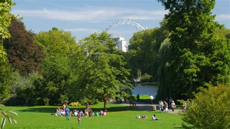 background green park london st james park stock footage video shutterstock