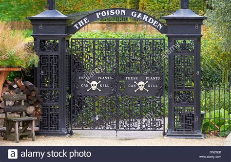 poison garden at alnwick garden northumberland england uk stock photo 64585539 alamy