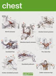 chest workouts to gain fast all bodybuilding