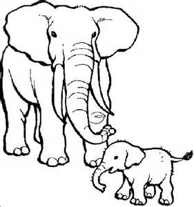 what color are elephants baby elephant coloring pages barriee