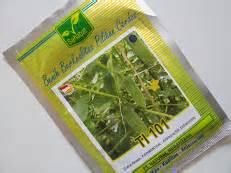 Benih Pare Nasa biofarming organik meningkatkan dan kesuburan