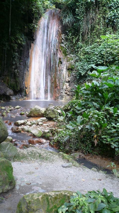 St Lucia Botanical Gardens 1000 Images About Waterfall St Lucia On Pinterest Botanical Gardens Diamonds And