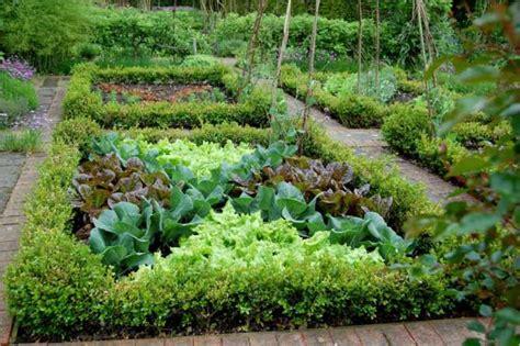 potager emily s garden