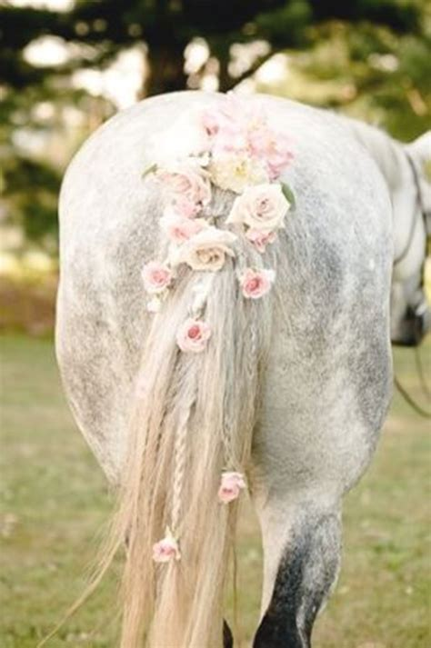 papillion tail how long to keep hair 30 amazing horse tail braids ideas to make your friends