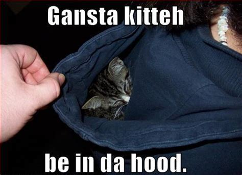 Hood Rat Meme - the gallery for gt ghetto girl meme