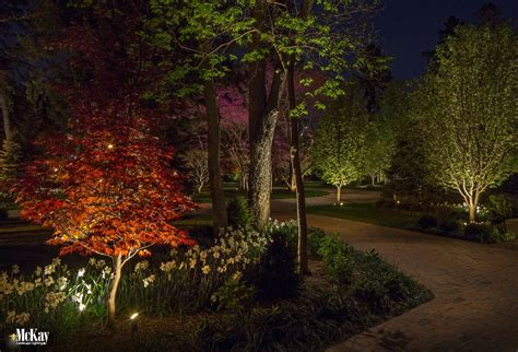 landscape lighting maintenance tips mulching