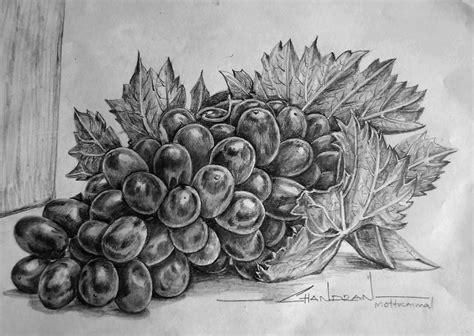 drawn grapes grape leaf pencil and in color drawn grapes drawn grapes pencil sketch pencil and in color drawn
