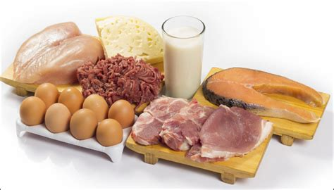 protein rich meals want to lose weight eat protein rich meals health news