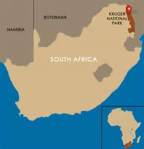 Luxury Beds Kruger National Park Safari Tours