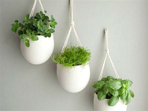 hanging herb planters indoor herb garden ideas creative juice