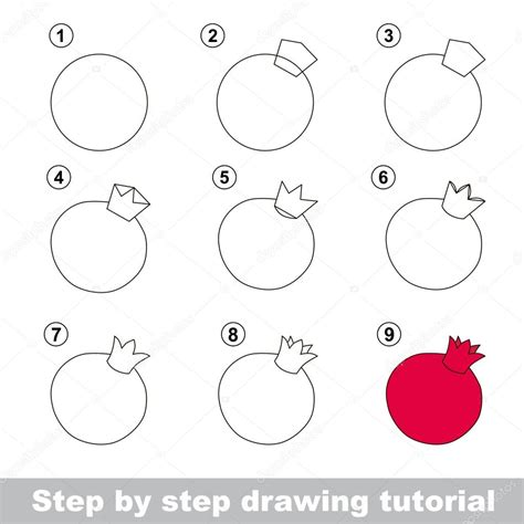 V Drawing Tutorial by Drawing Tutorial How To Draw A Pomegranate Stock Vector