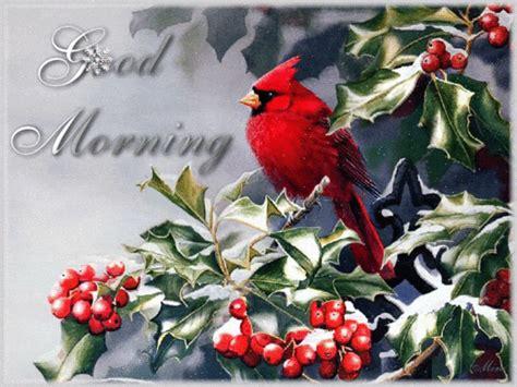red cardinal   snowy morning christmas bird