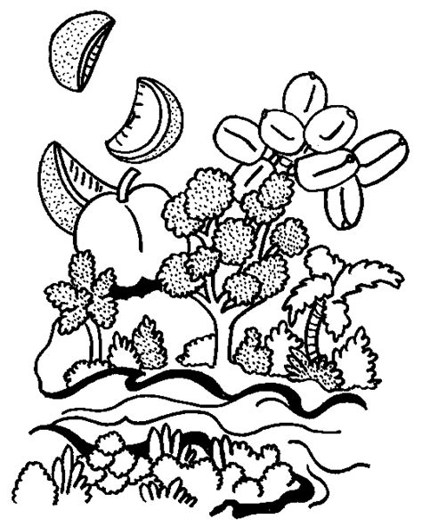 free torah coloring pages