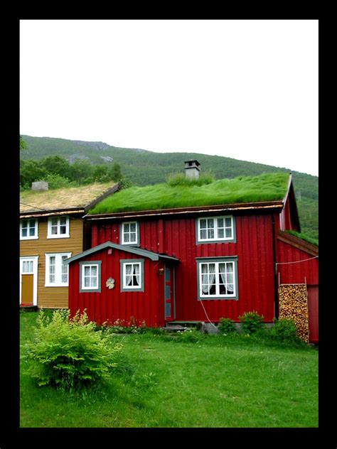 norway buy house norwegian houses by guinness fan on deviantart