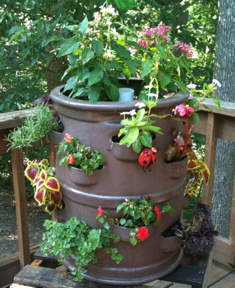 container gardens for florida innovative container gardening product to be featured at