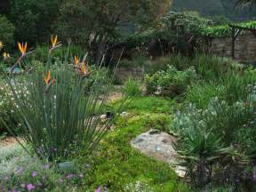 7 tips for creating a water wise garden africa geographic