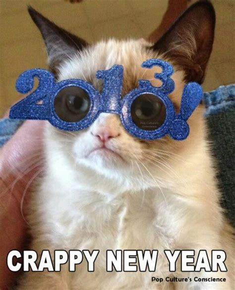 grumpy cat new year happy new year grumpy cat grumpy cat fansite