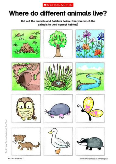 printable animal homes animals and habitats free printable science an