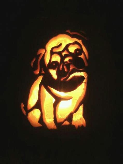 pug stencil pug pumpkin carving pets pumpkins pug and so