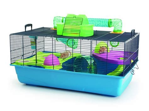 Cages For Hamsters Hamster Cage Images Amp Pictures Becuo
