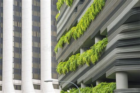 immagini terrazzi terrazzi verdi immagine stock immagine di terrazzo flora